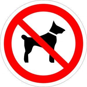 (041) Знак Запрещается вход (проход) с животными